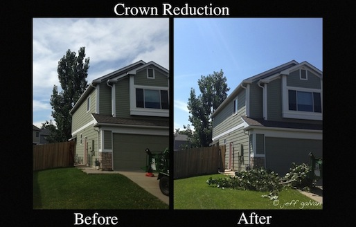 Crown Reduction