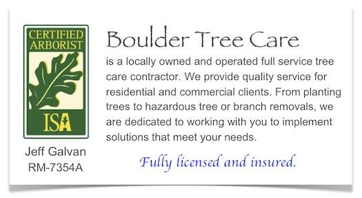 tree service tips